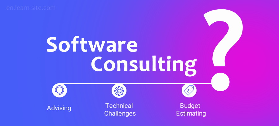 software consultation