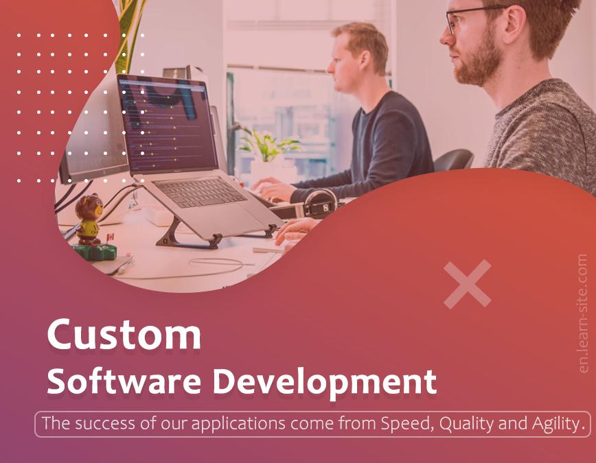 Customer software development